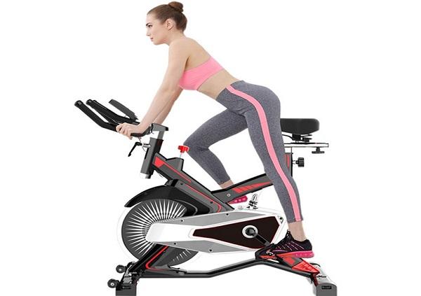 Xe đạp thể dục Fuji Luxury M100